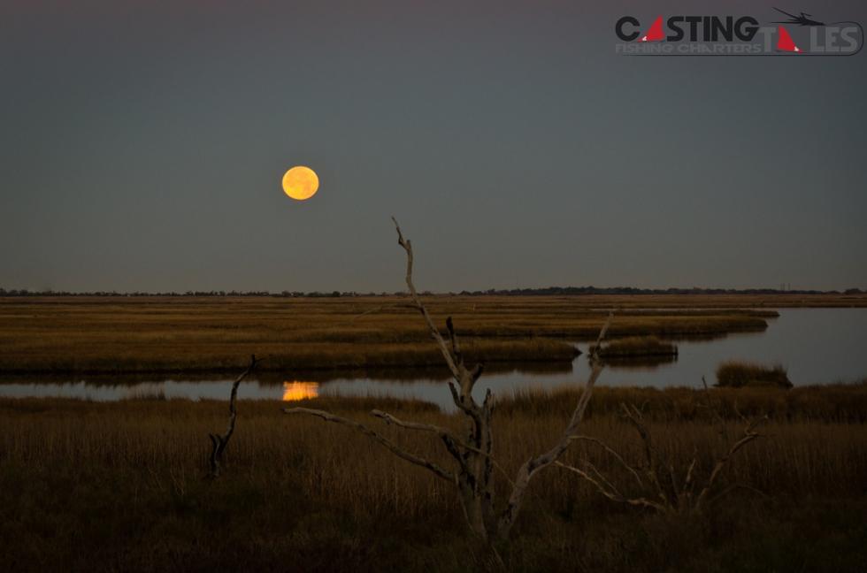 Photo of the Week…Full Moon