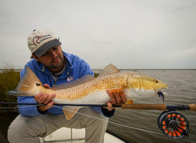 Galveston Marsh Redfish