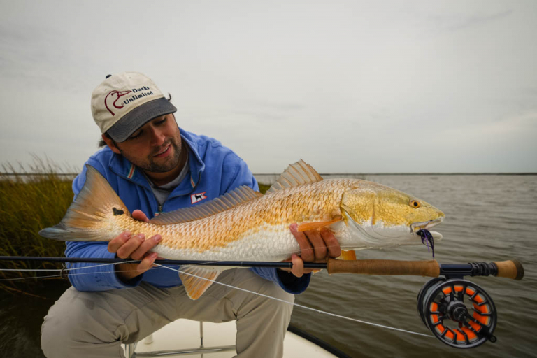 Galveston Marsh Redfish