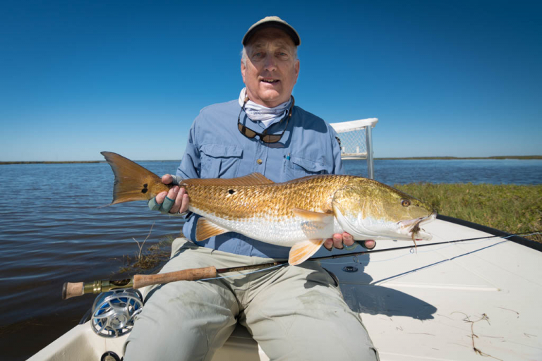 Galveston Bay Marsh Redfish