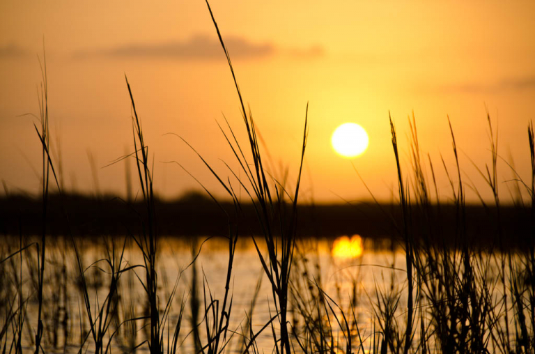 Galveston Marsh Sunrise