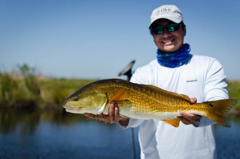 Galveston Gold Marsh Redfish