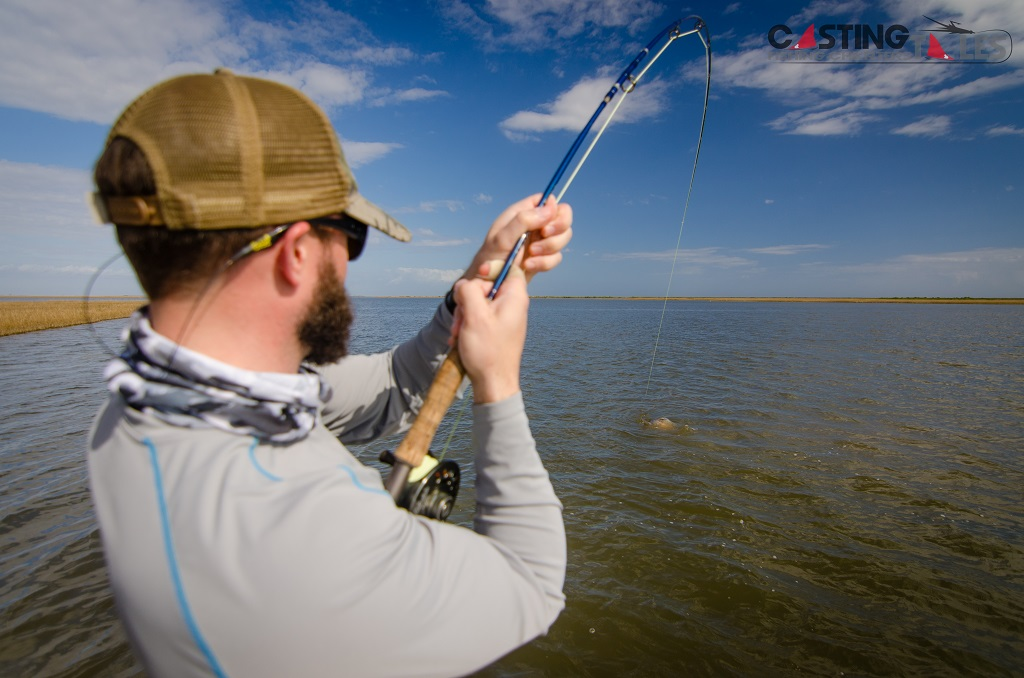 Louisiana black drum fly fishing casting tales for Fishing in la
