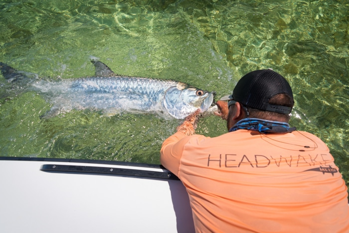 Islamorada Florida Keys Tarpon Fly Fishing Guide